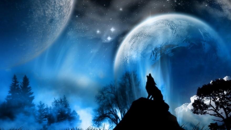 شبِ گرگ